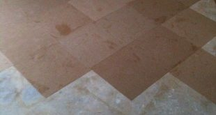 Brown Bag Floor