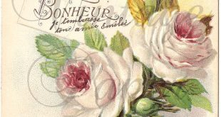 Shabby Pink Roses French Postcard Antique Chromolithograph from Vintage Paper At...